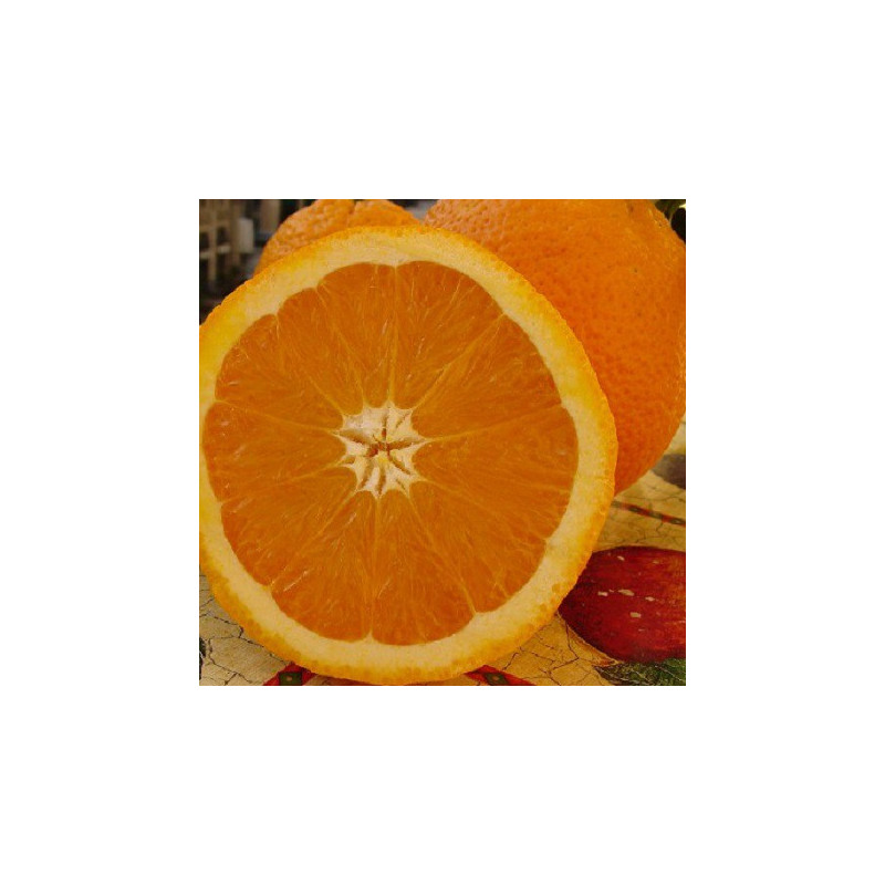 Jus Multi-fruits - Bio & équitable - Ethiquable - 1 l